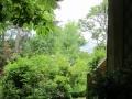 Vue du jardin depuis l'entrée