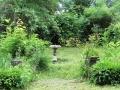 La fontaine, vue depuis la pergola